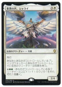 MTG Japanese Foil Shalai, Voice of Plenty Dominaria NM