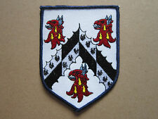 Dragon Shield Coat Of Arms Woven Cloth Patch Badge (L1K)