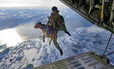 Navy Seal Team 6 & Cairo The Belgian Malinois Free Fall 8.5x11 Photo