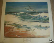 "VINTAGE PRINT, GULLS AT SEA BY HOWARD CONNOLLY 28""X25"" Realism Unsigned"