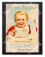 Historic Columbia Macaroni 1900s Advertising Postcard