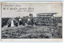 W.F. Bole's Dahlia Farm, Ada, Michigan; postcard c. 1905 flower wagon, history