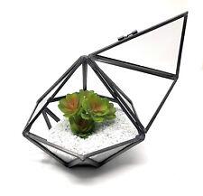 Glass Geometric DiamondTerrarium Tabletop Moss Plant Flower Display Planter UK