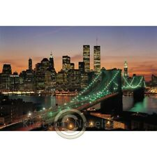 1000 Piece Glow-In-The-Dark Puzzle: New York Usa Puzzle Hobby Jigsaw Pieces Fun