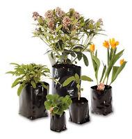 Polypots: Polythene plant pots, flexible, economical, reusable: various sizes