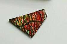 7) Natural Ammolite Gemstone Canada ~ Mineral Ammonite Fossil Crystal