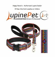 "Lupine Lifetime Dog Leash or Collar - 1""- Saddle Blanket Print - EL PASO"