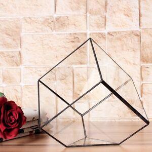 Inclined Cube Clear Glass Geometric Terrarium Box Tabletop Succulent Plant Fern