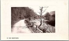 RPPC MA Chelmsford In The Mountains Road Along River Real Photo Postcard