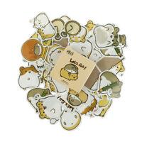 45pcs/box Small Guinea Pig Paper Stickers Scrapbooking DIY Diary Album Labels UK