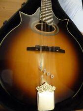 1 Packet of Mandolin Harmonic Overtone Suppressors / Dampers for strings