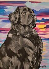 Beautiful Original Newfoundland Dog Portrait by artist Vasiliki