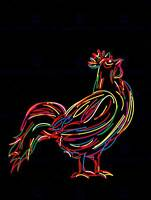 ROOSTER STYLIZED DRAWING COLOURFUL CHICKEN FARM PHOTO ART PRINT POSTER BMP1802B