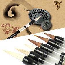 6pcs Chinese Japanese Piston Water Brush Calligraphy Weasel Hair Pen + Wool Pen