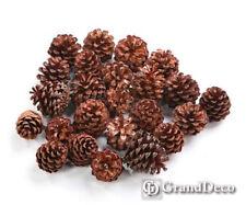 Austriaca  Pine Cones 6-8 cm 1 kg Excellent quality approx 45 Large  cones