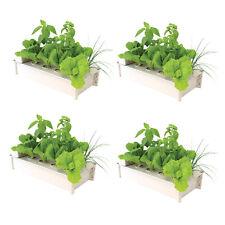 Hydrofarm Salad Box Hydroponic Soil-Free Salad Greens Growing Kit (4 Pack)
