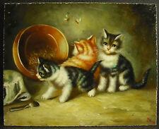 Tre gattini olio su pannello c1900 olio on panel three gattini gatti gatti