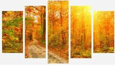 SUNSET FOREST TREES WOODS NATURE 5 SPLIT PANEL WALL ART CANVAS PICTURE PRINT