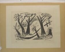 """ vue de paysage "" graphique/litho. 6/7 sign. Walter Schmidt IV / 1969 in cadre"