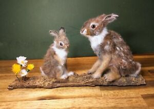 Cottontail Rabbit, Mother and Baby Rabbit- Needle Felted Animal Sculpture, OOAK,