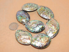 Paua Abalone Large Shell Beads New Zealand 7 piece strand over 1 inch (13549)