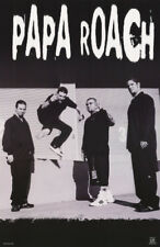 POSTER: MUSIC:  PAPA ROACH  (#2)   IN B/W   FREE  SHIPPING !  #6544 RC16 F