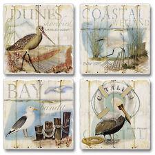 Absorbent aStone Coasters-Set of 4-Wetland Songbirds # 817