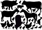 Farm Animals Vinyl Decal Stickers Mixed Size Wall Art Bedroom Deco Chicken, Pig