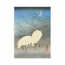 Woodblock Printing Birds Art Prints