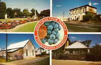 E0647cgt Australia SA Coonawarra Historic Buildings Multiview postcard