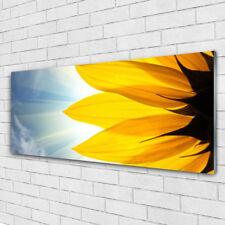 Impression sur verre Image tableaux 125x50 Floral Pétales
