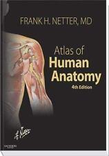 Netter Basic Science: Human Anatomy by Frank H. Netter (2006, Paperback,...