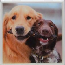 Handmade Natural Stone Ceramic Tile Marble Drink Coasters - Set of 4 - Dogs 4 G