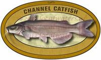 Channel Catfish sticker waterproof fish decal GUARANTEE 3 years no fade