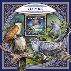 Sierra Leone 2017 MNH Cuckoos Cuckoo 1v S/S Bird Birds Stamps