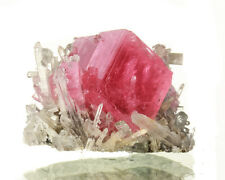 ".8"" Red RHODOCHROSITE Crystal Apatite+Quartz Nates Pocket Sweet Home CO for sale"