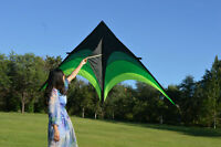 Large Delta Kite For Kids And Adults Single Line Easy w/ Kite Handle Fly To P8T8