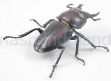 Yujin insect Neolucanus protogentivus okinawanus Stag beetle bug figurine Figure