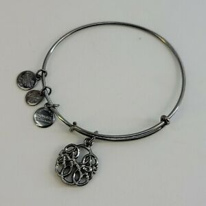 Alex And Ani Midnight Silver Path Of Life IV Bracelet Expandable
