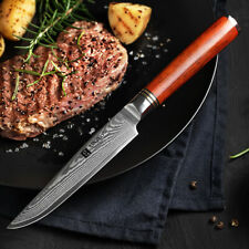 XINZUO 5 inches steak knife japanese damascus steel kitchen knife fruit knives
