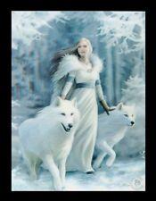 3d CUADRO CON LOBOS -Invierno Guardians- Anne Stokes Fantasy Lienzo Póster