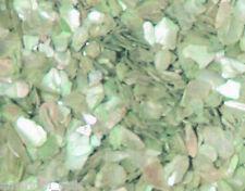 1 boite Paillette de NACRE Vert Pistache bijoux d'ongle Nail Art