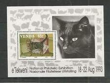 VENDA 1993 DOMESTIC CATS MINISHEET U/M NH LOT 8880A