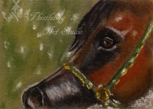 ACEO Foal Horse Animal Pet Artwork Pastel Painting Equestrian Holiday Gift Art