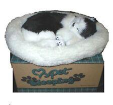 Realistic, lifelike Breathing pet, sleeping black/white cat Japanese Bobtail Hol