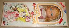 CANDY CANDY JUMBO DOLL ROBIN JAPAN ANNI '70 YUMIKO IGARASHI キャンディ・キャンディ