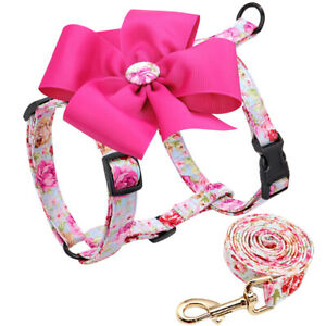 Fancy Floral Dog Harness and Leash Soft Nylon Walking Vest for Small Dogs Girl