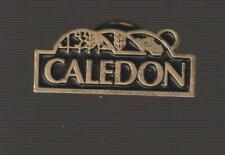 Caledon Ontario Metal Pin Pinback - Very Good