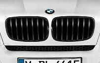 Kidney Grilles Black Genuine BMW X5 X6 M Performance 51712150246