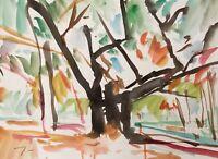 JOSE TRUJILLO ORIGINAL Watercolor Painting art SIGNED COLORIST Woods 9X12